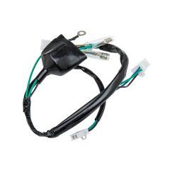 Faisceaux électrique YCF